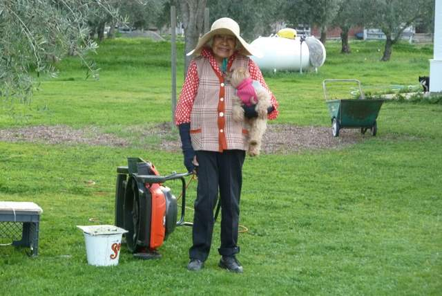 Luisa and her dog tinker along with her lawn mower.