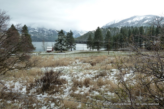 Gorgeous Wallowa Lake in Joseph, Oregon with a deer in picture.